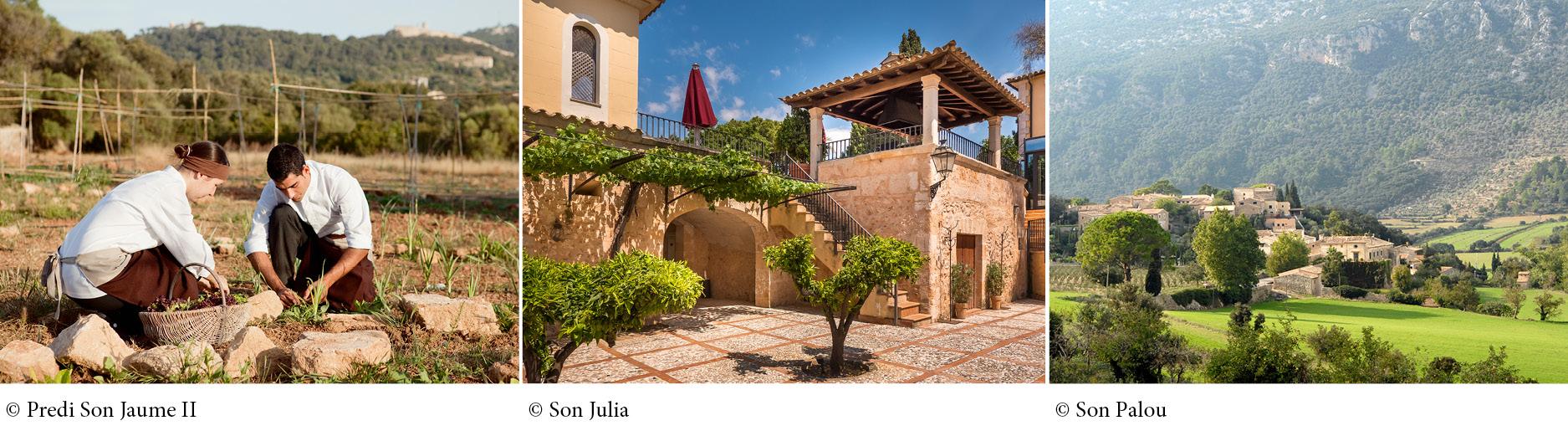 Engel & Völkers Mallorca Southwest