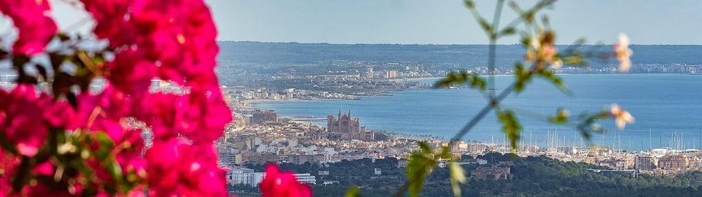 Sea & Cathedral View Son Vida_